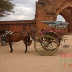 Horse Cart Ride in Bagan - Vietnam and Myanmar tour 9 days