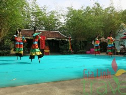 Traditional show
